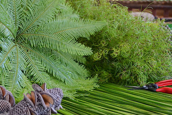 Native foliage on the workbench