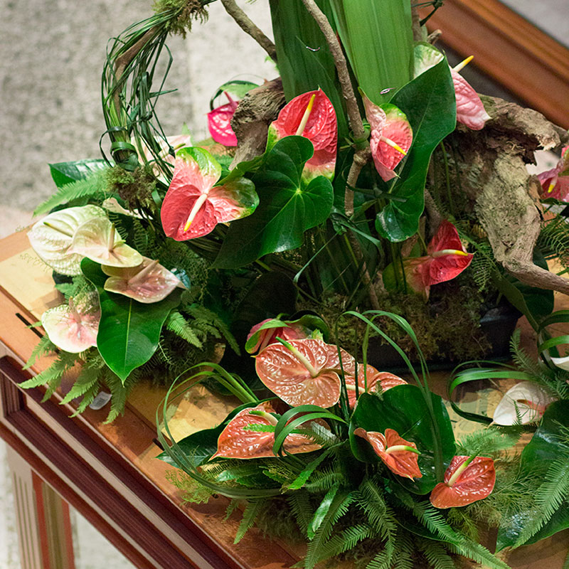 Aussie Typha, Umbrella Fern and Gymea Leaves feature with anthuriums in a large coffee table design