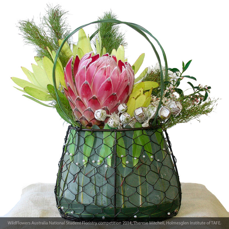 Koala fern and Flexi Grass used in basket floral design