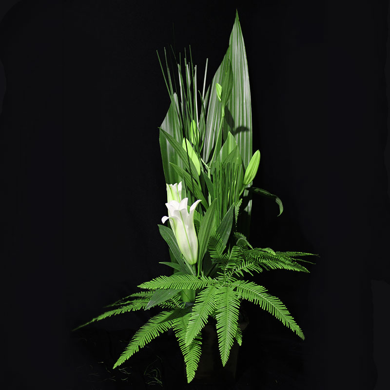 Formal upright design using Gymea leaves, steel grass and umbrella fern