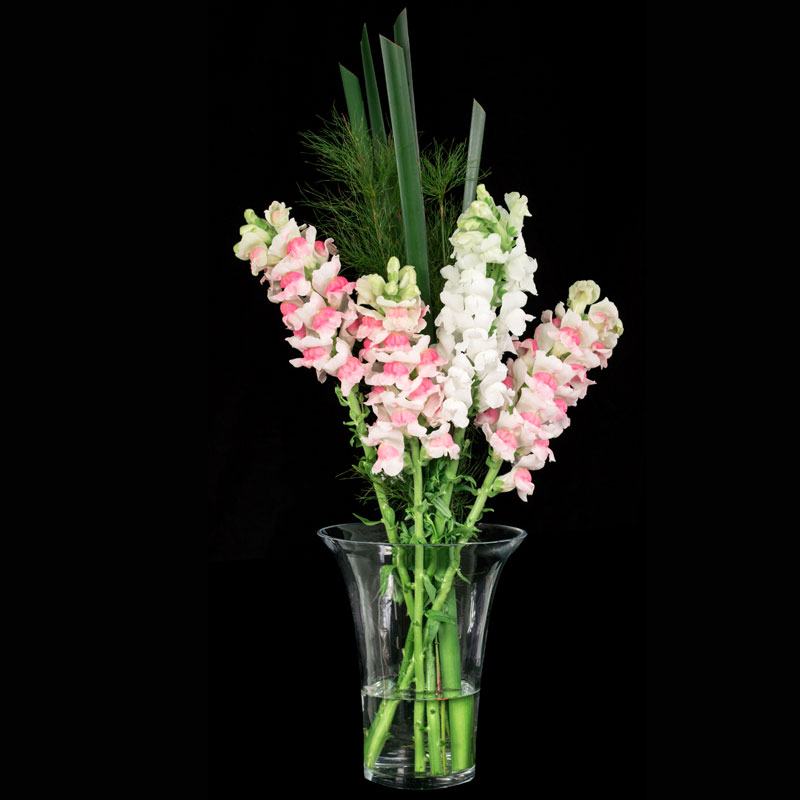 Upright floral design featuring Aussie Typha and snapdragon flowers.