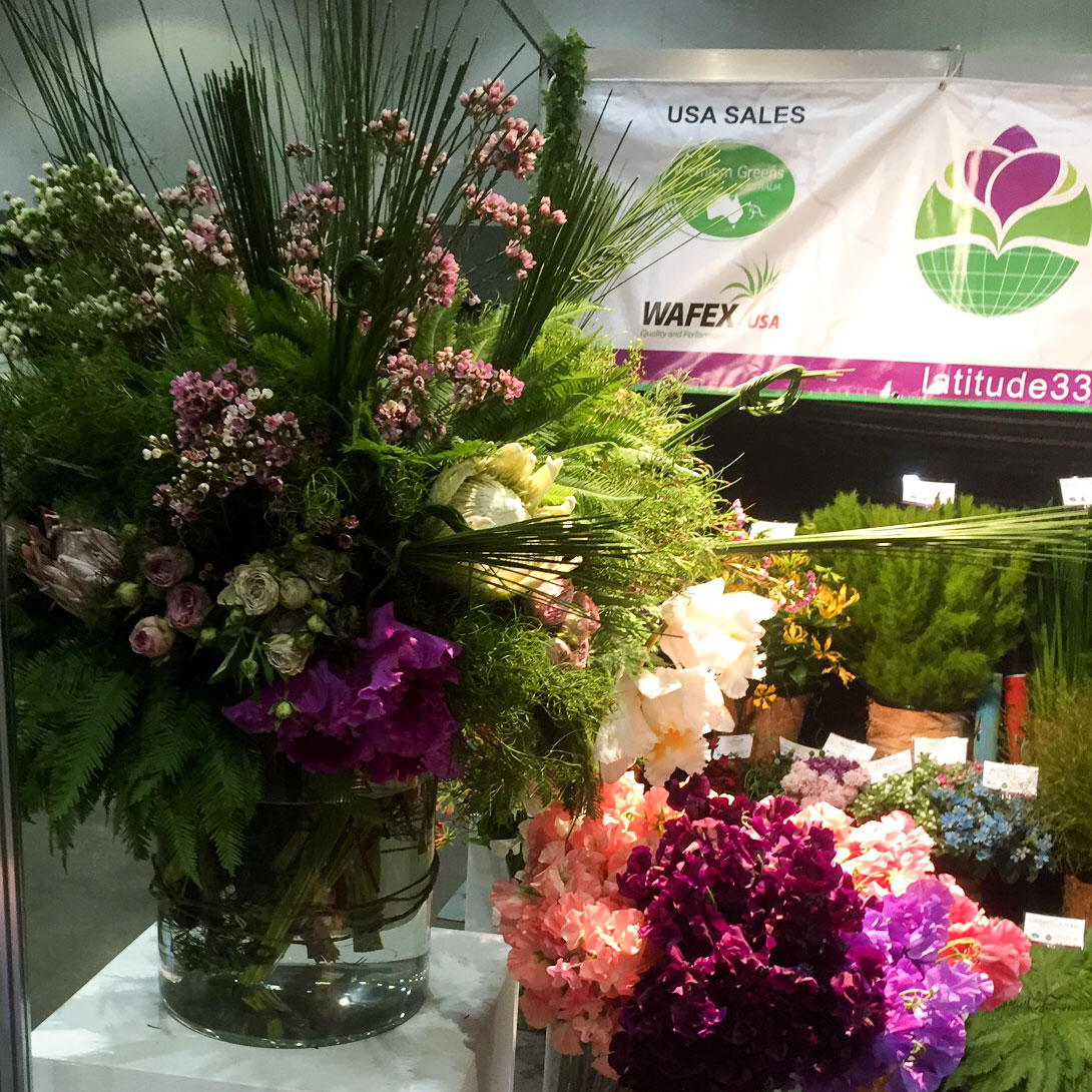 Flower and Foliage products from Latitude 33 Floral Group