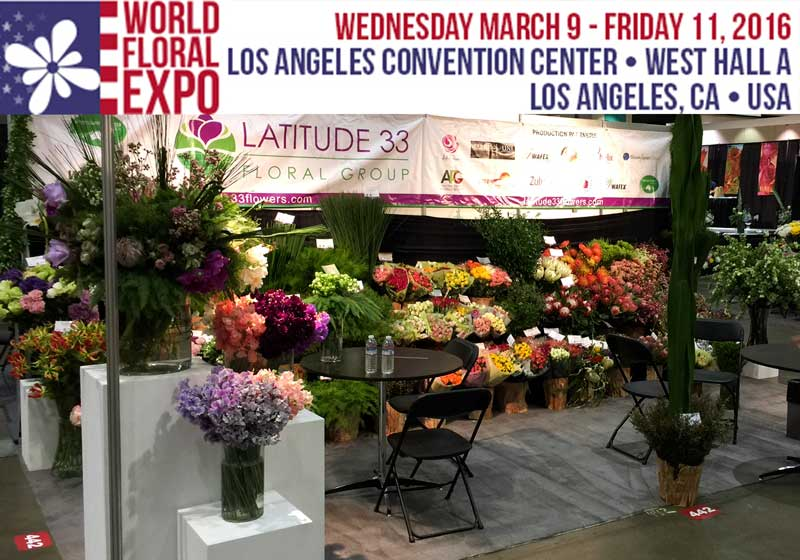 Latitude 33 Floral Group display