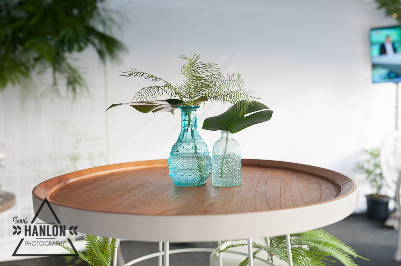 Sea Star Fern in a vase as a table centrepiece