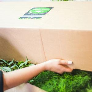 Florist unpacks box from Premium Greens Australia