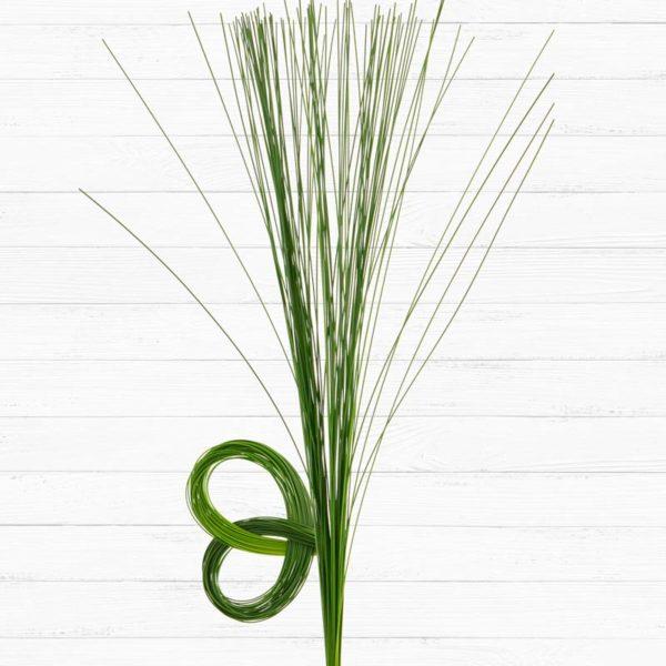 Flexi Grass™
