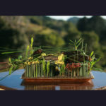ARRANGEMENT ~ Designer : Marco Appelfeller ~ Foliage : Steel Grass, Puzzle Stix™, Didgery Sticks™, banksia sticks