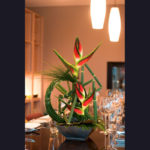 ARRANGEMENT ~ Designer : Premium Greens Australia ~ Steel Grass, Puzzle Stix™, Umbrella Fern™