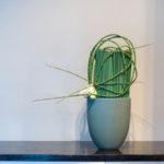 ARRANGEMENT ~ Designer : Premium Greens Australia ~ Puzzle Stix™, Steel Grass, serruria