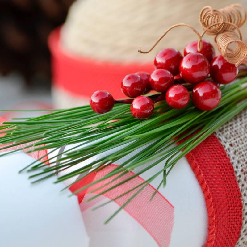 Aussie Pine Tails™ Christmas close-up