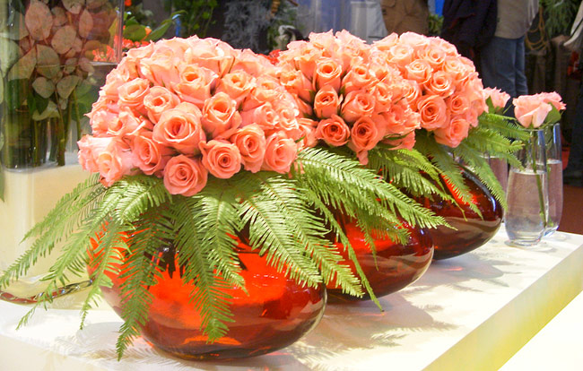 Vase arrangements using Umbrella Fern as a collar.