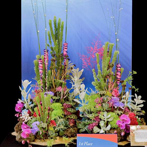 Coral inspired floral design featuring Woolly Bush