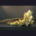 ARRANGEMENT ~ Designer : Elyza Bowe, Wildflowers Australia competition ~ Flowers : banksia, leucadendron and gum nuts