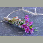 BUTTONHOLE ~ Designer : Premium Greens Australia ~ waxflower, thryptomene, serruria
