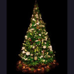 TREE ~ Designer: Elise Rosen, Rose and Heart ~ Foliage : Umbrella Fern™, Sea Star Fern™, pine cones, teak pods (crows ash), ~ Flowers: include lilies, orchids