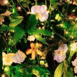 TREE ~ Designer: Elise Rosen, Rose and Heart ~ Foliage : Umbrella Fern™, Sea Star Fern™, Bribie Pine, teak pods (crows ash), ~ Flowers: lily, orchid, hydrangea, ammi